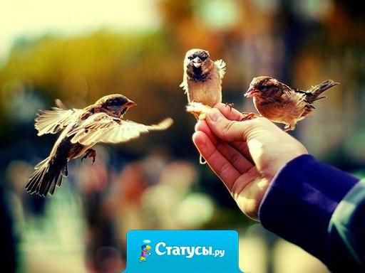 Люди постоянно придумывают себе проблемы. Почему бы не придумать себе счастье?!