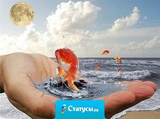 Жди новый день, как маленькое чудо - и он удачу непременно принесет, и помни счастье прячется повсюду, лишь позови - оно тебя найдет!