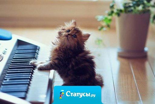 Музыка - это следы, по которым можно вернуться в разное время жизни.