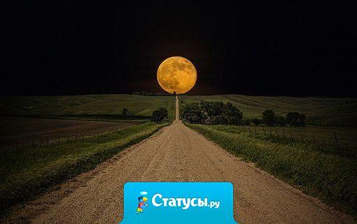 Не знаете что делать, встаньте и идите, дорога имеет классное свойство - приводить.