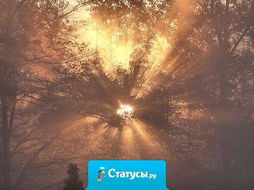 В воле человека есть сила стремления, которая превращает туман внутри нас в солнце.
