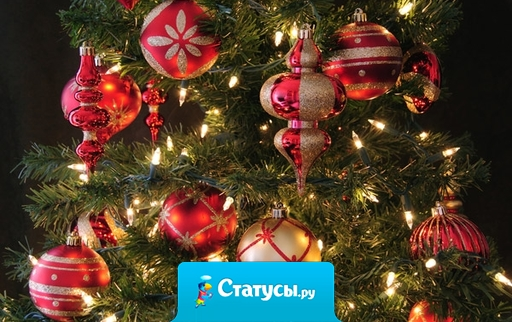 Желаю в наступающем году: забот не знать, деньжат не мерить, любить, надеяться и верить!!!