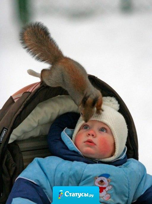 Привет, малыш. Орехи есть? А если найду?