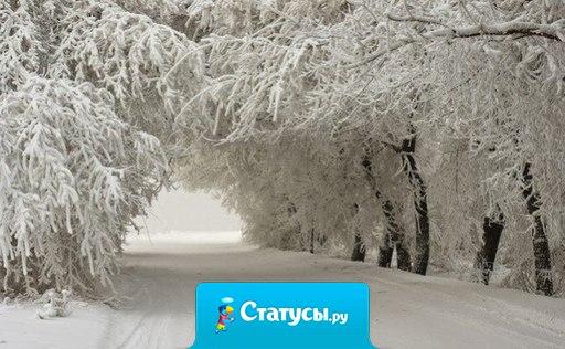 Хочу именно такой зимы на Новый год!