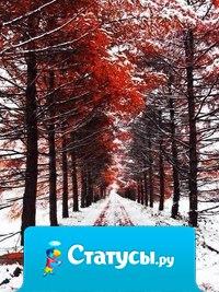 Удивительная встреча уходящей осени с наступающей зимой...
