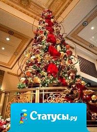 Хочу, чтобы в Новый год Дед Мороз под ёлку положил 3 подарка - Счастье в дом, Любовь в семью, Здоровье близким.