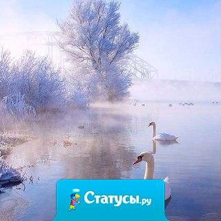 В самом сердце зимы таится трепет весны, а под покровом каждой ночи нас ждет улыбка рассвета...