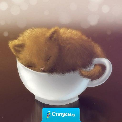 Самое трудное по утрам - это не уснуть после того, как выключишь будильник.