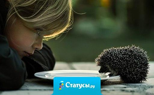 Никогда не надо пренебрегать маленькими величинами, потому что через них мы приходим к большим.