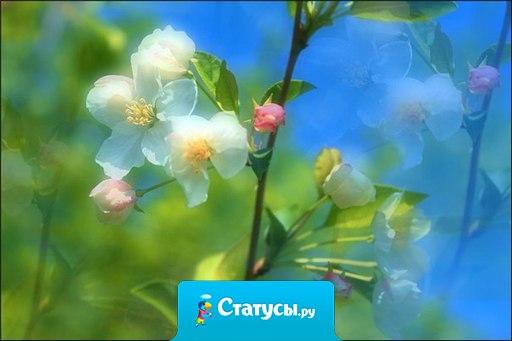 Судите о своем здоровье по тому, как вы радуетесь утру и весне.