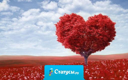 Только поистине светлый сердцем человек может влюбиться «от искорки» будучи в преклонном возрасте…