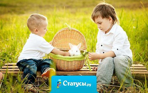 Брат может быть не прав, но от этого он не перестает быть братом.