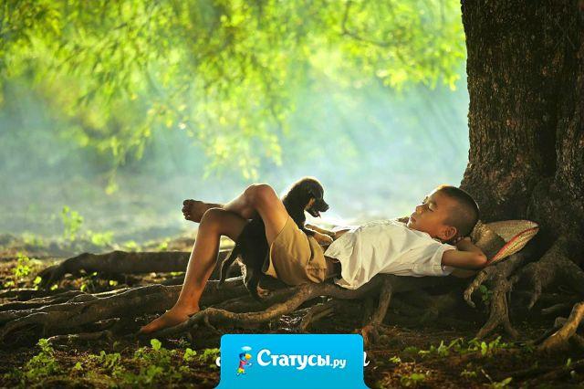 Когда тебе плохо – прислушайся к природе. Тишина мира успокаивает лучше, чем миллионы ненужных слов.