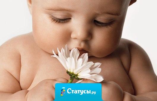 Любовь ребенка — чище хрусталя....