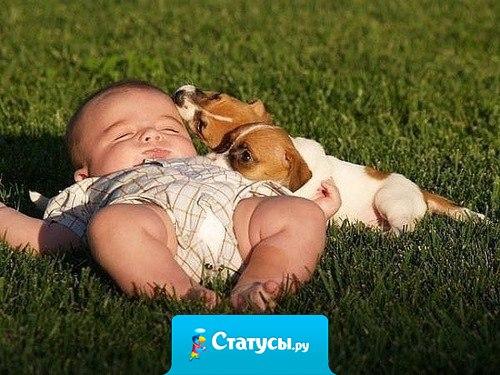 Счастье нельзя купить, но его можно родить!