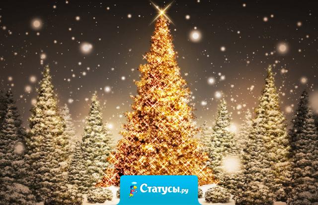 Не забудьте 31 декабря в 23:55 выйти из интернета и встретить Новый Год.