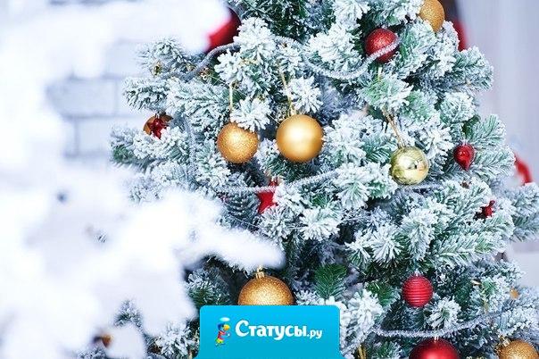 С приходом нового года нам свойственно строить планы, надеяться на лучшее, мечтать. По традиции мы загадываем желания. Хочется пожелать, чтобы заветные мечты и предновогодние ожидания исполнились! Будьте счастливыми, пусть любовь наполняет ваши сердца!